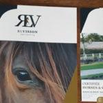 RL Vision - dépliant, flyer et carte de visite